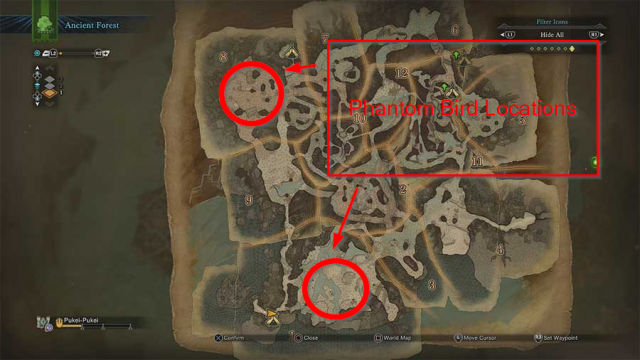 Monster Hunter World Phantom Bird Locations Ancient Forest