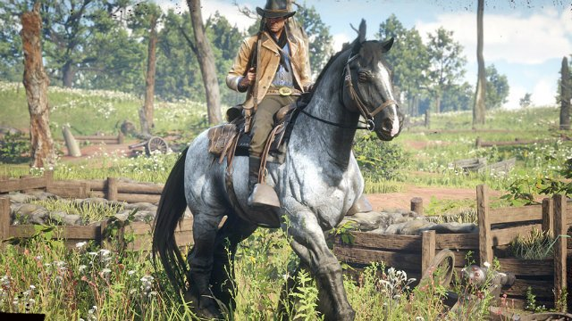 Red Dead Redemption 2 Editions