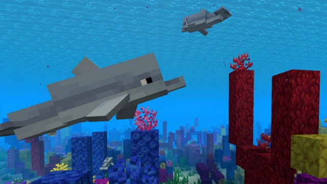 what do dolphins eat in minecraft