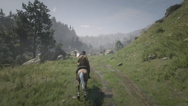 Red Dead Redemption 2 PS4 Screen