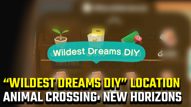 Animal Crossing New Horizons Wildest Dreams DIY Location