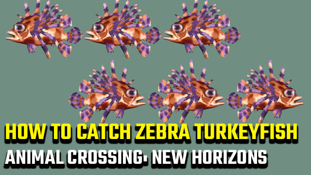 Animal Crossing: New Horizons Zebra Turkeyfish