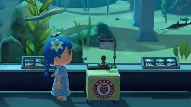 Animal Crossing: New Horizons International Museum Day