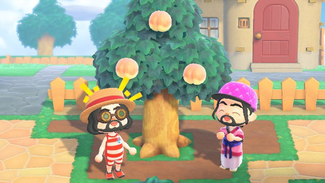 Is Animal Crossing 2 player? peach tree