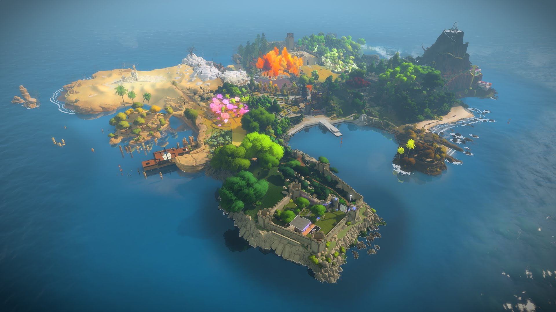 10. The Witness